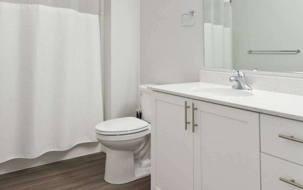 spacious bathroom with a large mirror and easy access to the tub